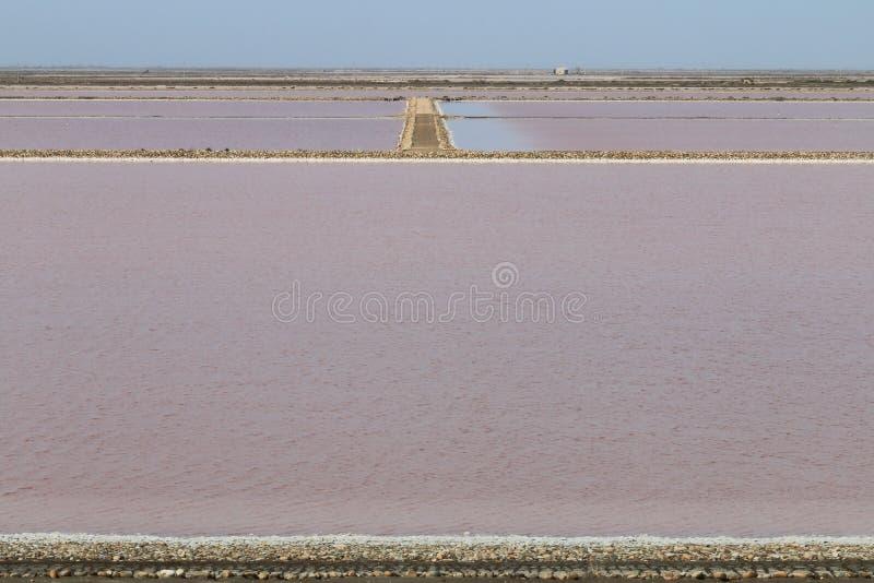 Mas-des Crottes, Camargue för salt produktion i Frankrike fotografering för bildbyråer