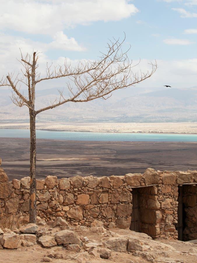 Download Masada e o mar inoperante foto de stock. Imagem de deserto - 16874028
