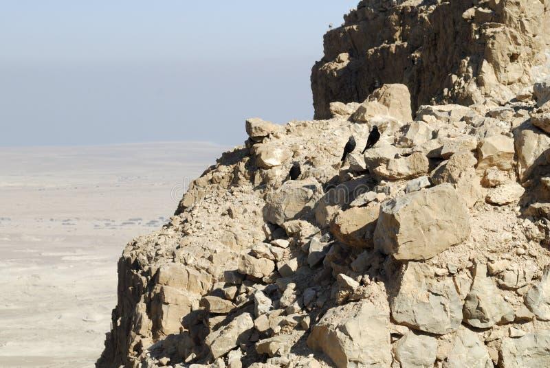 Masada, Israel fotografia de stock royalty free