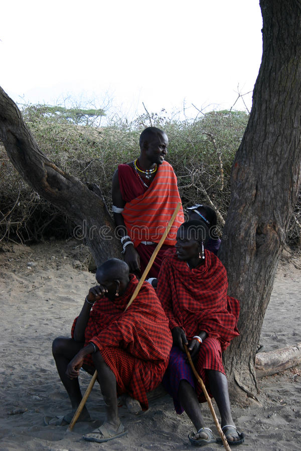 masai stock foto