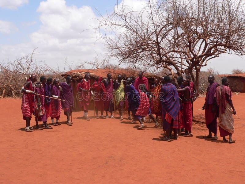 masai dancingowi wojownicy fotografia royalty free