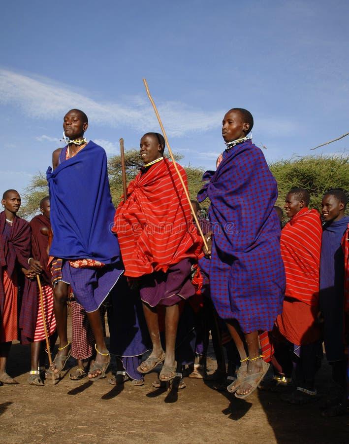 Masai, das Kriegertanz durchführt. lizenzfreies stockbild