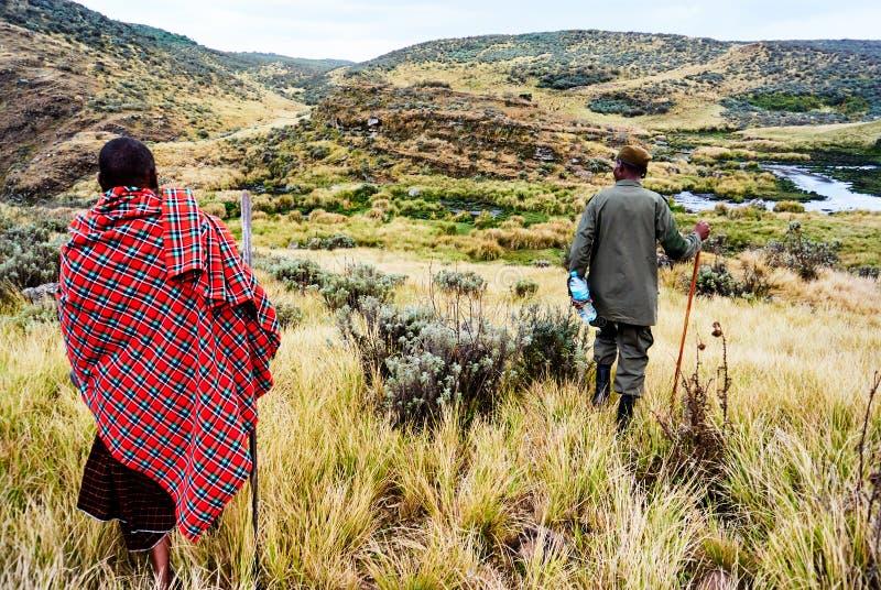 Masai die in het Ngorongoro-behoudsgebied lopen stock foto's