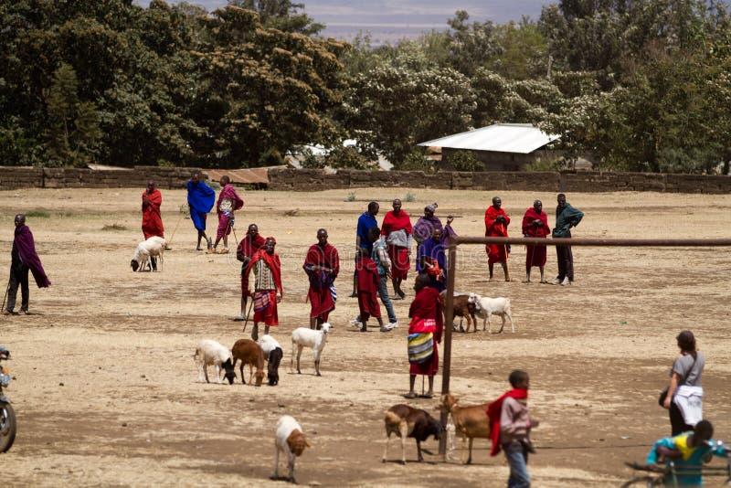 Masai gathering. Masai people gathering in one of the market near arusha in tanzania stock image