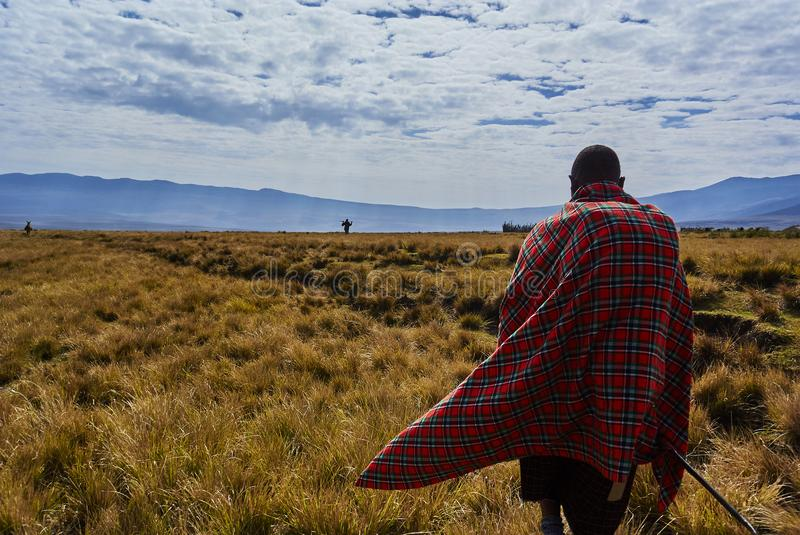 Masai guide hike in the mountains. Hike in Ngorongoro Conservation Area Nationnal park Highlands craters en route for Bulati Village from Nainokanoka with Masai stock photos