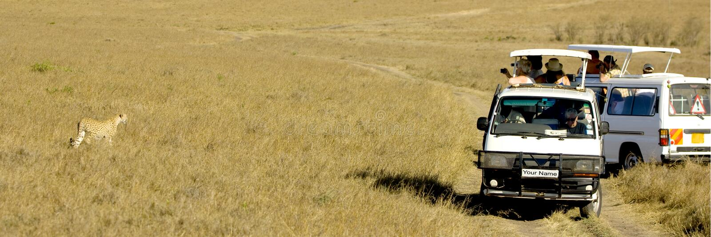 Masai mara Kenya da chita fotografia de stock
