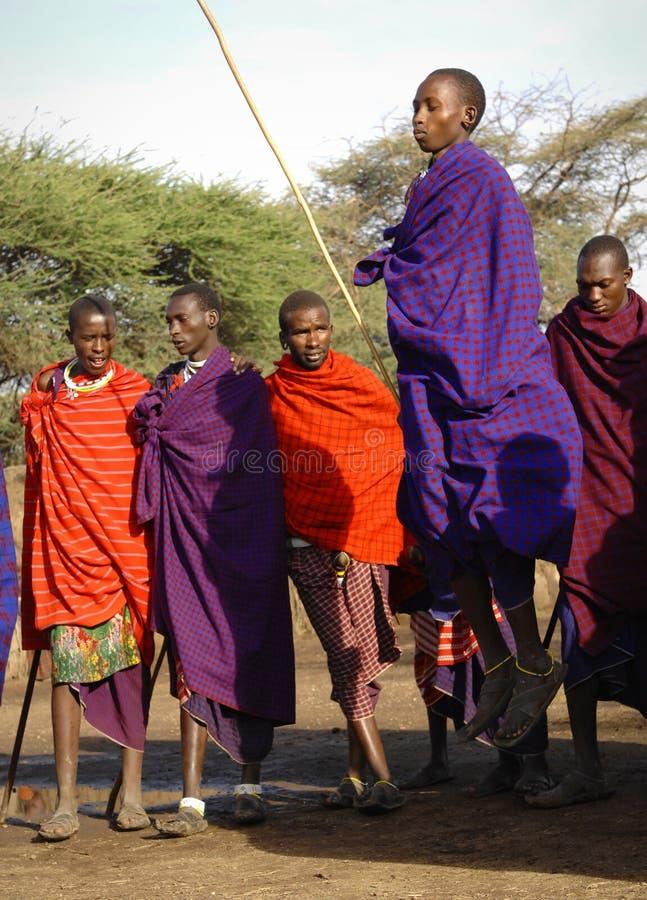 Masai que executa a dança do guerreiro. imagens de stock