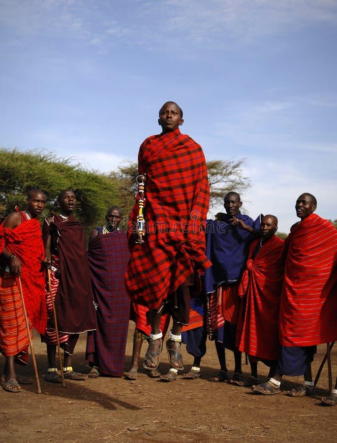 Masai que realiza danza del guerrero. fotos de archivo