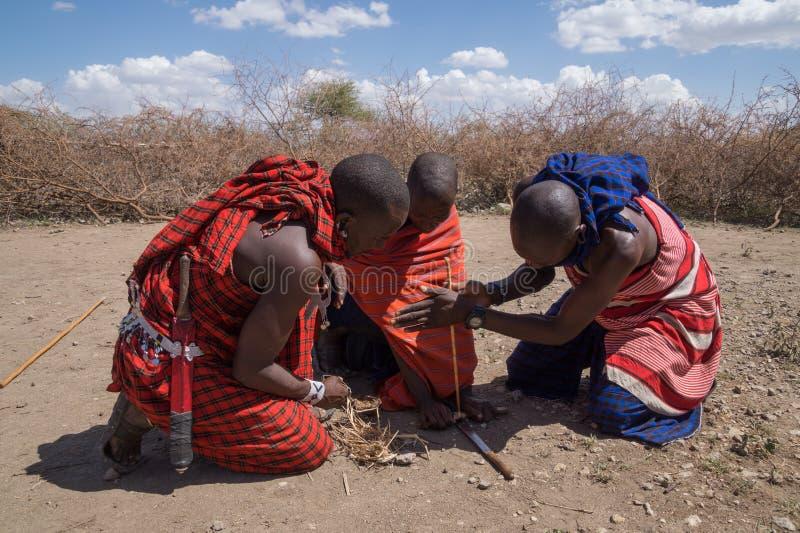 Masai warriors making fire stock images