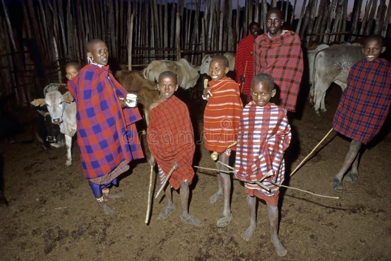 Masai wioski życie, grupowi portretów potomstw poganiacze zdjęcie stock