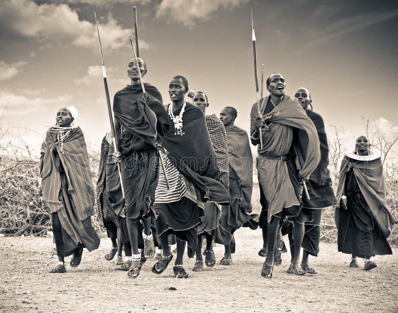 Masai wojownicy tanczy tradycyjnych skoki jako kulturalna ceremonia, fotografia royalty free