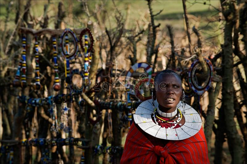 Masai woman with ornaments. stock photography