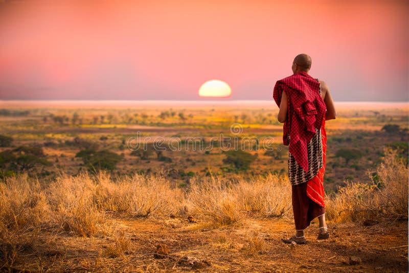 Masaiman av Tanzania royaltyfri fotografi