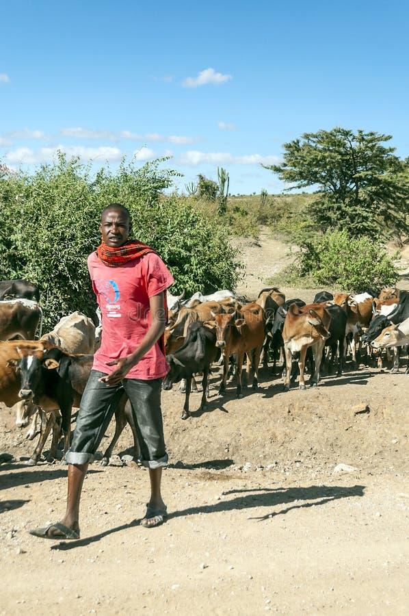 Masaivee stock afbeeldingen