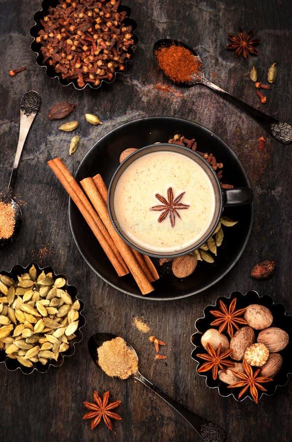 Masala te med kryddor royaltyfri fotografi