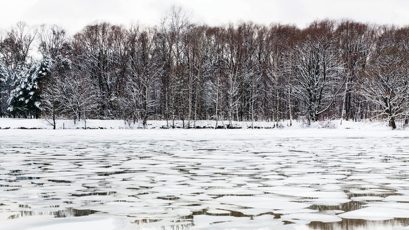 Masas de hielo flotante de hielo de fusión en la superficie del río en crepúsculo fotografía de archivo