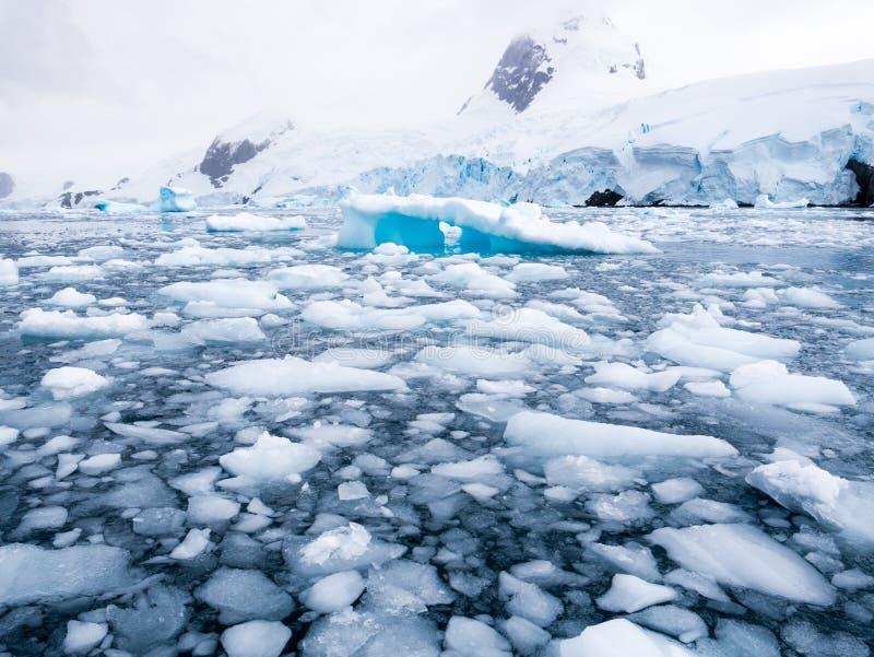 Masas de hielo flotante de hielo flotantes, hielo de deriva en la ensenada de Cierva en Hughes Bay, Grah foto de archivo