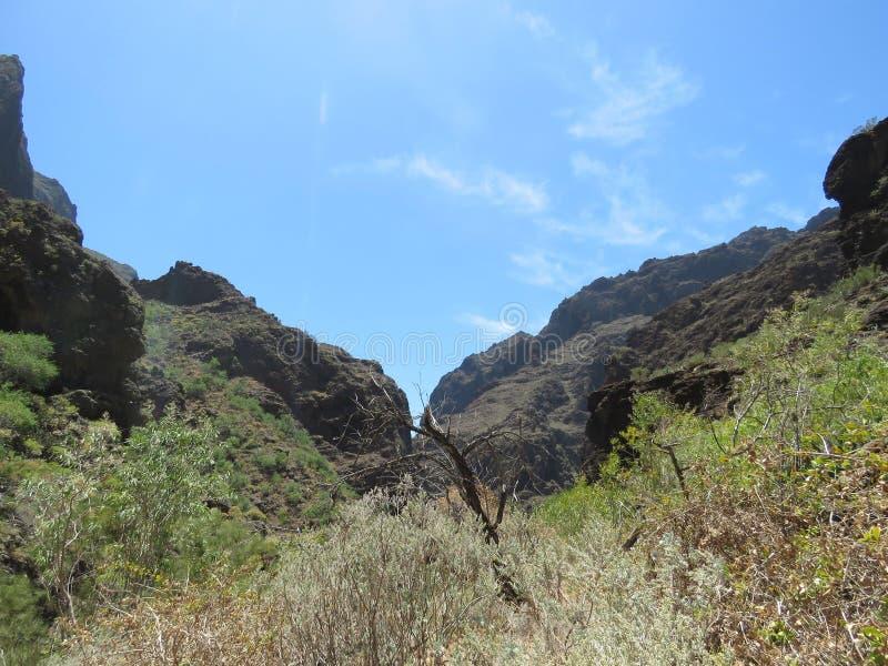 Masca峡谷 库存图片