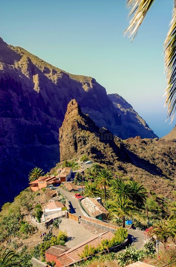 Masca in Tenerife come attrazione per molti turisti immagini stock libere da diritti