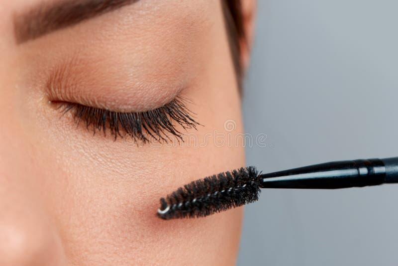 mascara Closeup av den härliga framsidan för ung kvinna med skönhetmakeup, arkivbild