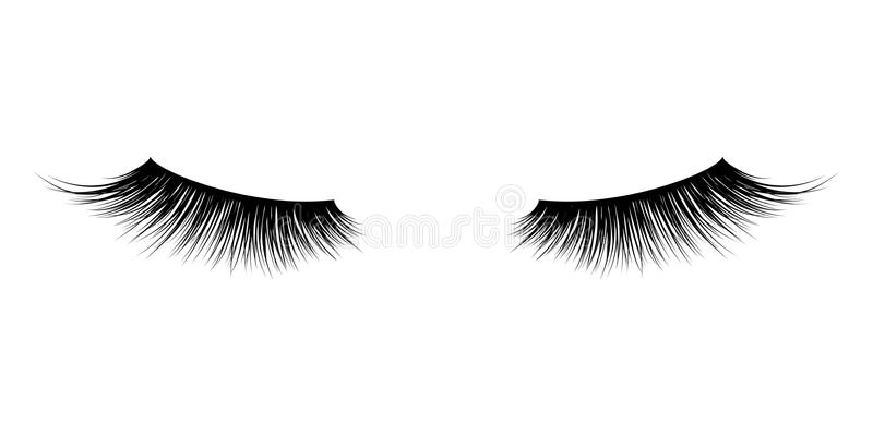 Mascara Eyelash ή μαστιγίων διανυσματικά εικονίδια ελεύθερη απεικόνιση δικαιώματος