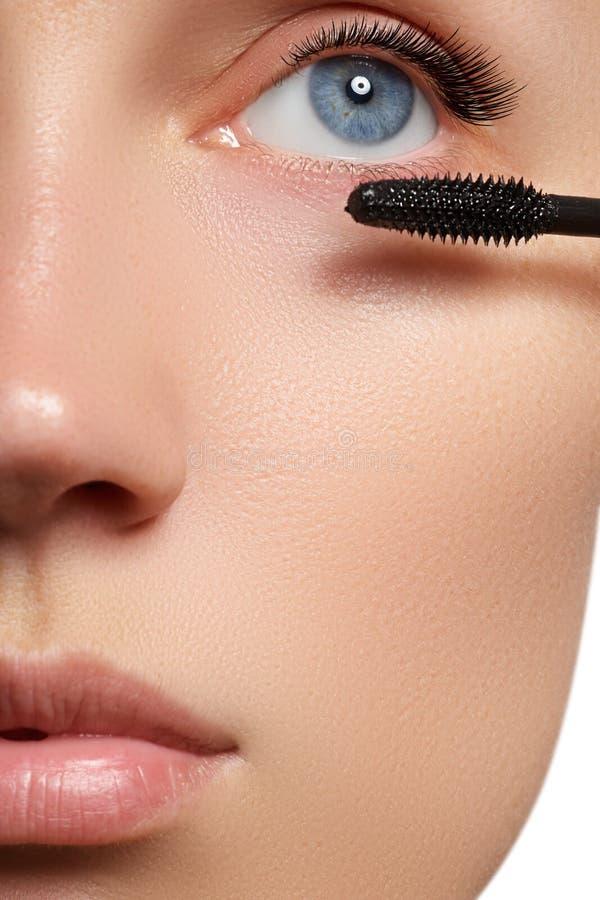 Mascara som applicerar närbilden, långa snärtar Ögonfransförlängningar royaltyfri bild