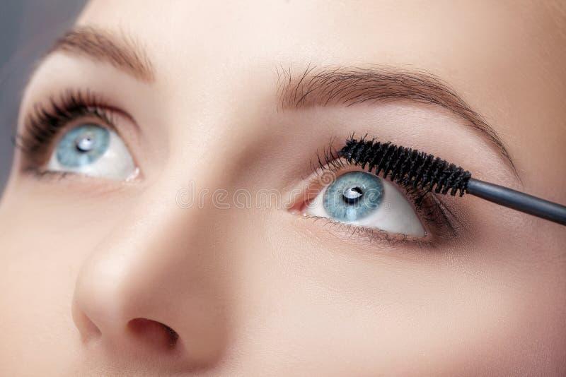 Mascaraborsteslut upp Smink för blåa ögon Applicera för mascara royaltyfria bilder