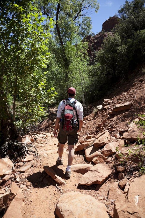 Maschio adulto che fa un'escursione nel deserto fotografia stock libera da diritti