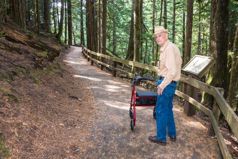 Maschio senior attivo che fa un'escursione con il camminatore sul sentiero didattico dentro fotografia stock libera da diritti