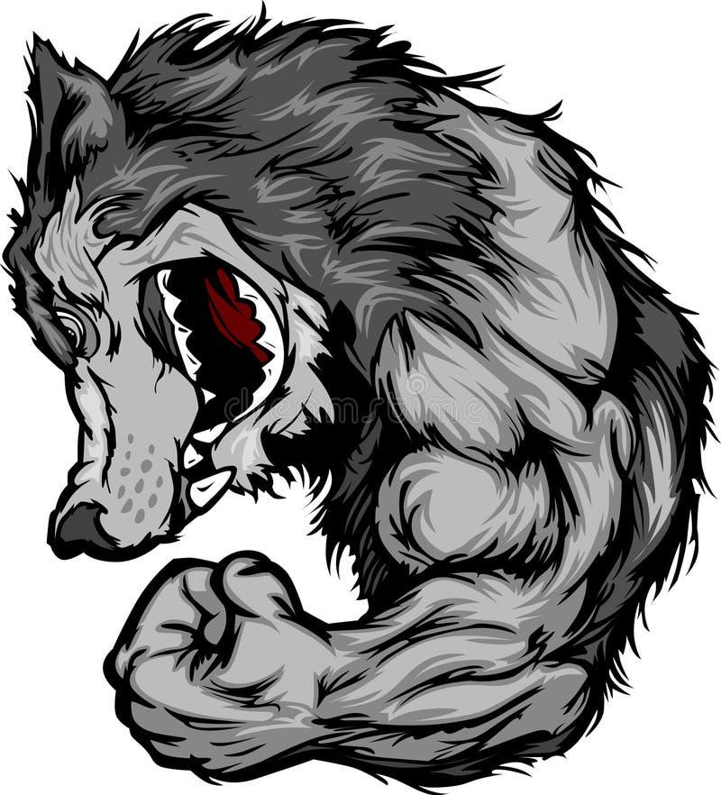 Mascota del lobo que dobla la historieta del brazo ilustración del vector