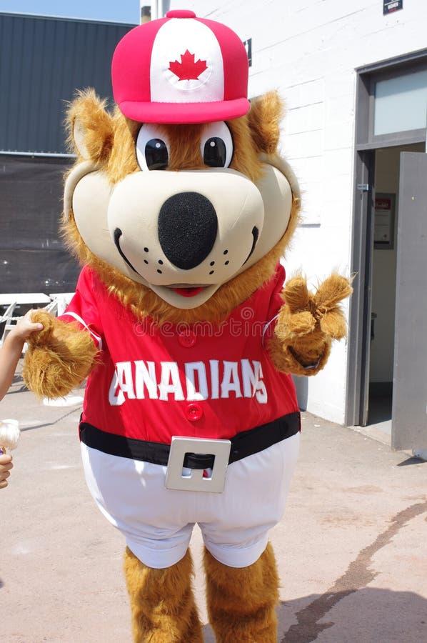 Mascotte de l'équipe de baseball de Canadiens de Vancouver photos libres de droits