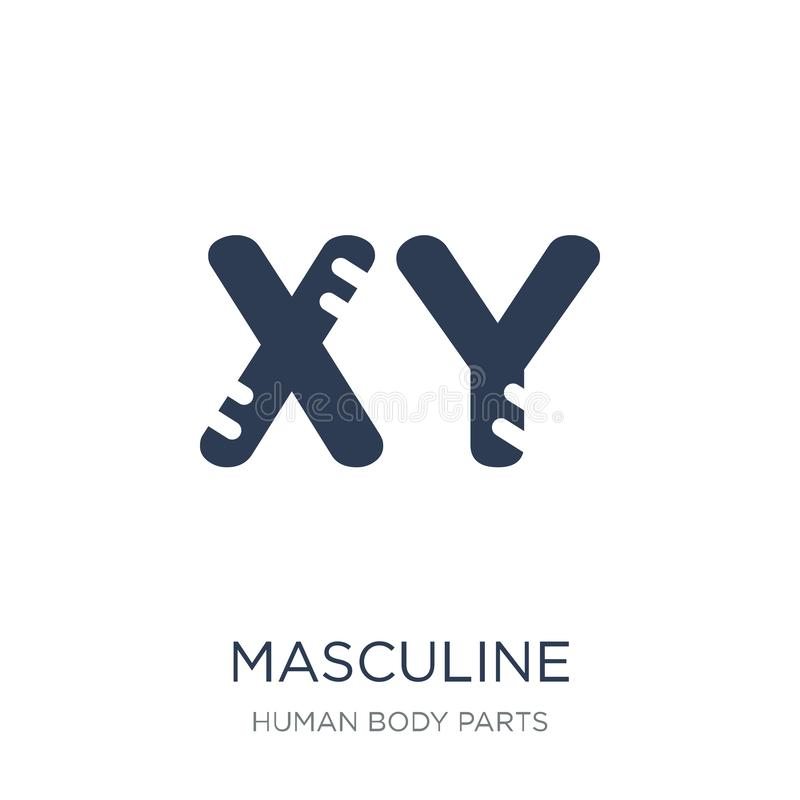 Masculine Chromosomes icon. Trendy flat vector Masculine Chromosomes icon on white background from Human Body Parts collection vector illustration