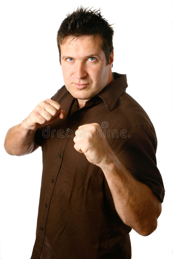 Download Masculine Man In Boxing Stance Stock Image - Image: 2763401