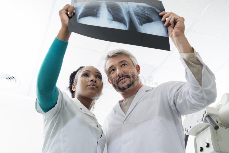 Masculino y hembra doctor la radiografía del pecho de Examining en hospital imagen de archivo libre de regalías