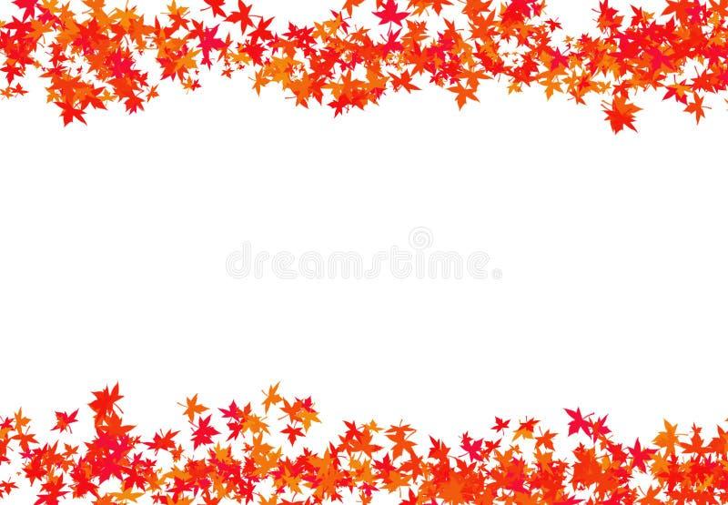 Masern Sie rote Blätter eines Ahorns, der in einen Beschränkungsrahmenherbst Carinaglückwunsch mit einem Weiß gesponnen wird stockfotos