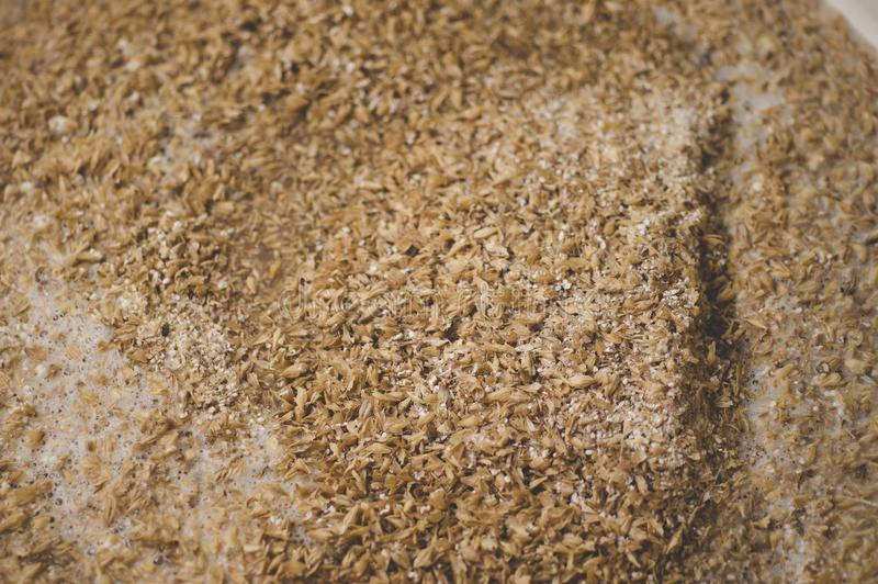 Mashing of milled malt grains into heated water to prepare wort. royalty free stock photography