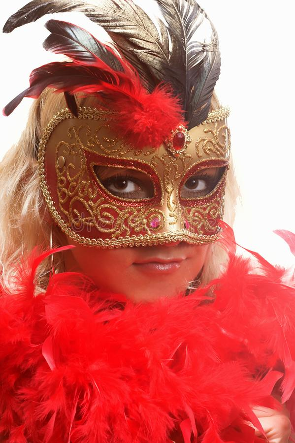 The mask royalty free stock image