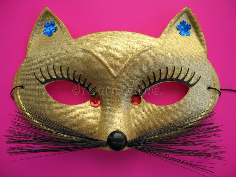 Cat Mask 1 stock foto