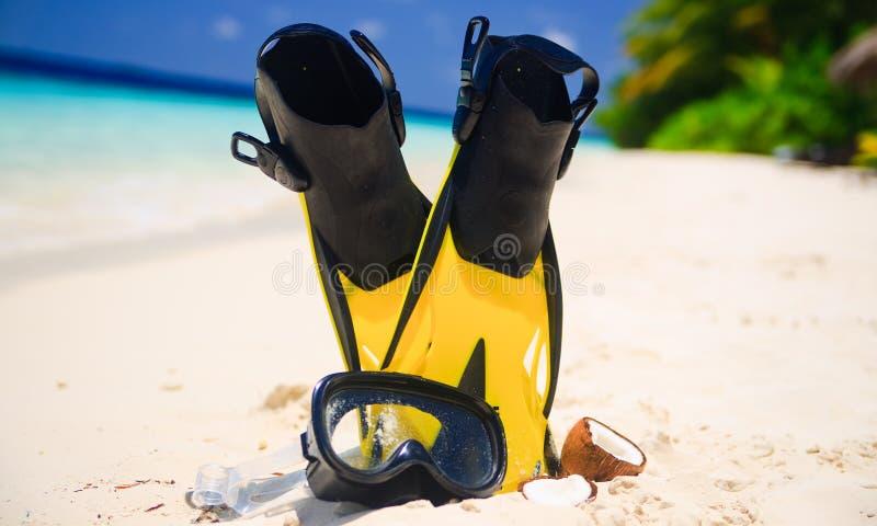 maskering för stranddykningfenor royaltyfria foton