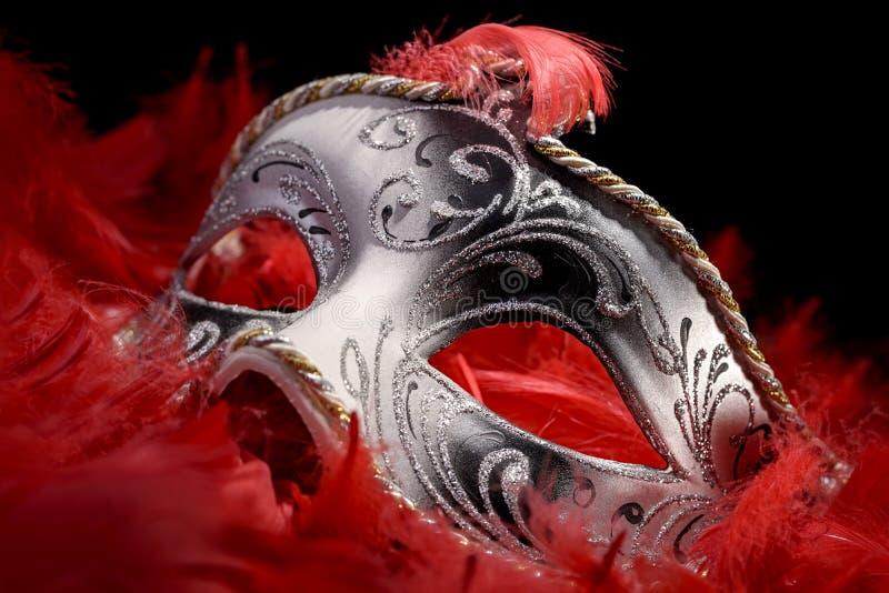 Maskeringskarneval royaltyfri foto