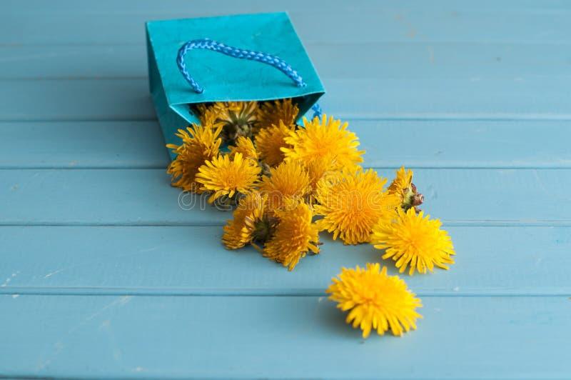 Maskrosen blommar i blå påse arkivfoton