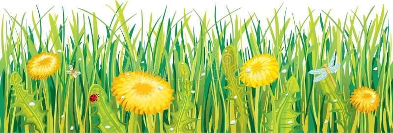 Maskrosor i gräset royaltyfri illustrationer