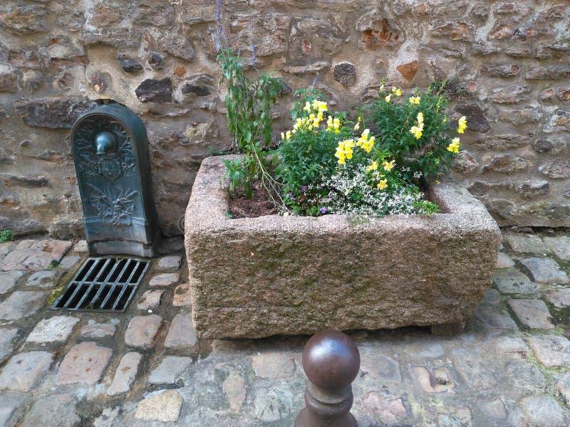 Fountain 4th century. Masonry century Flower basket stone Purple yellow white leaf Wall iron royalty free stock image