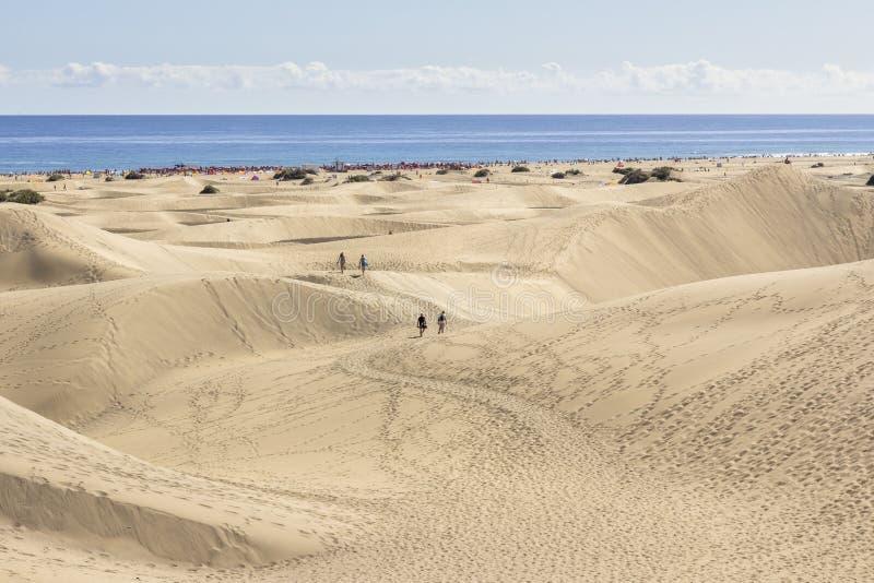 Maspalomas杜纳斯海滩,大加那利岛 库存照片