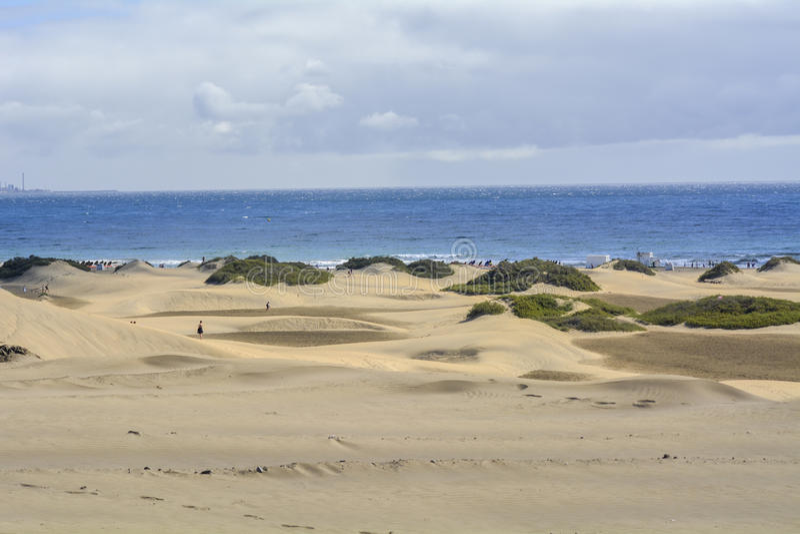 Maspalomas沙丘在大加那利岛,加那利群岛,西班牙 库存图片