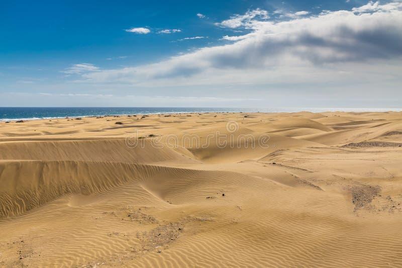 Maspalomas沙丘Gran卡纳里亚,加那利群岛,西班牙 库存图片