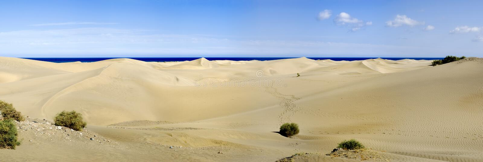 Maspalomas do panorama foto de stock royalty free