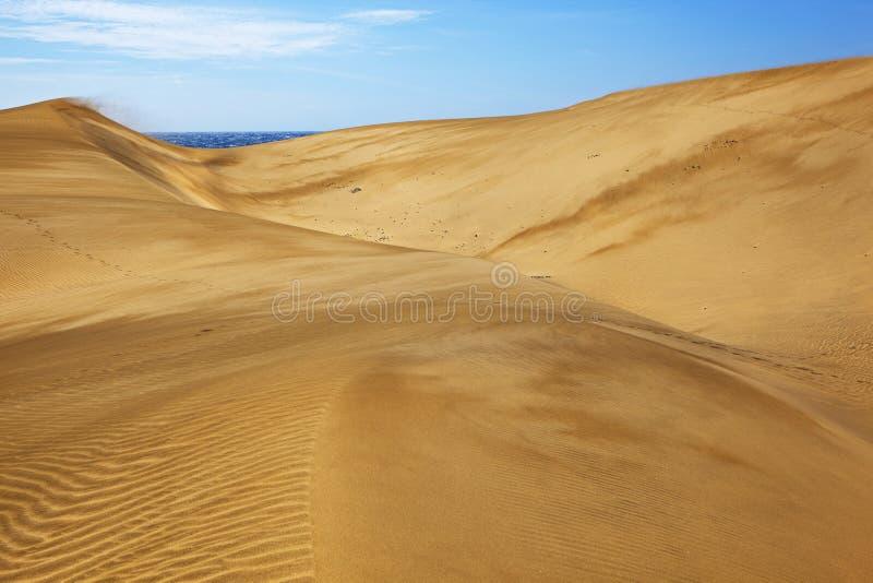 Maspalomas dunes stock photo