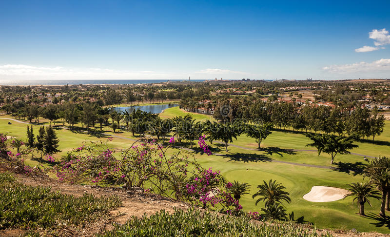 Maspalomas en golfpark royalty-vrije stock foto's