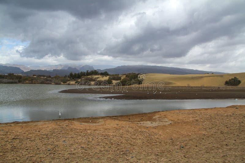 Maspalomas, Gran Canaria, Canarische Eilanden stock afbeeldingen